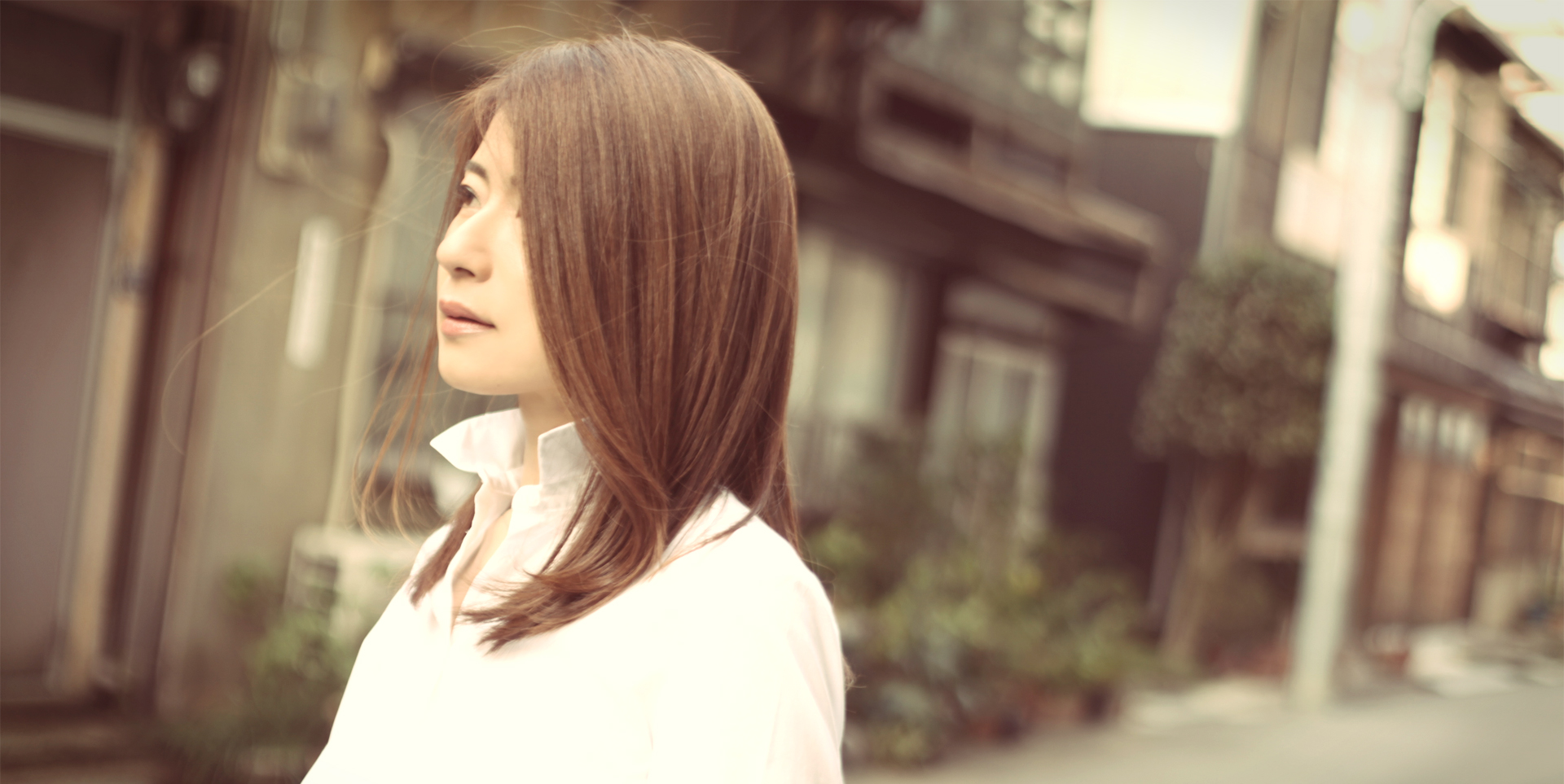 shizu_08_vintage_hpheader2